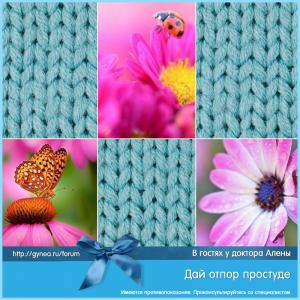prostuda_viferon_25_08102015